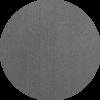 koivu-harmaa