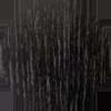 saarni_musta
