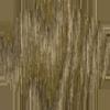 saarni_pähkinä